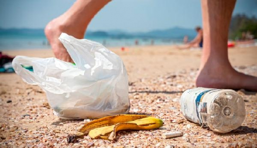 Town To Work With Local Merchants To Reduce Plastic Bag Use