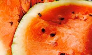 Water-Melon You Waiting For at the Veggie Wagon