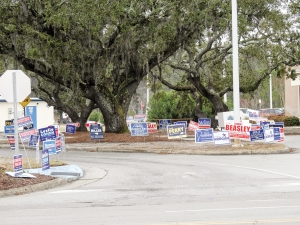 Campaign signs growing like wild flowers at the entrance to Carolina Beach Town Hall on Tuesday Feb. 18th. The  location is one of a number of one-stop early voting locations for the upcoming Primary Election. From Feb. 13th to the 18th,  401 voters cast ballots at this location. 2,958 ballots were cast across the county for the same period.