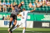 Wilmington Hammerheads Shut Out as Rochester Wins