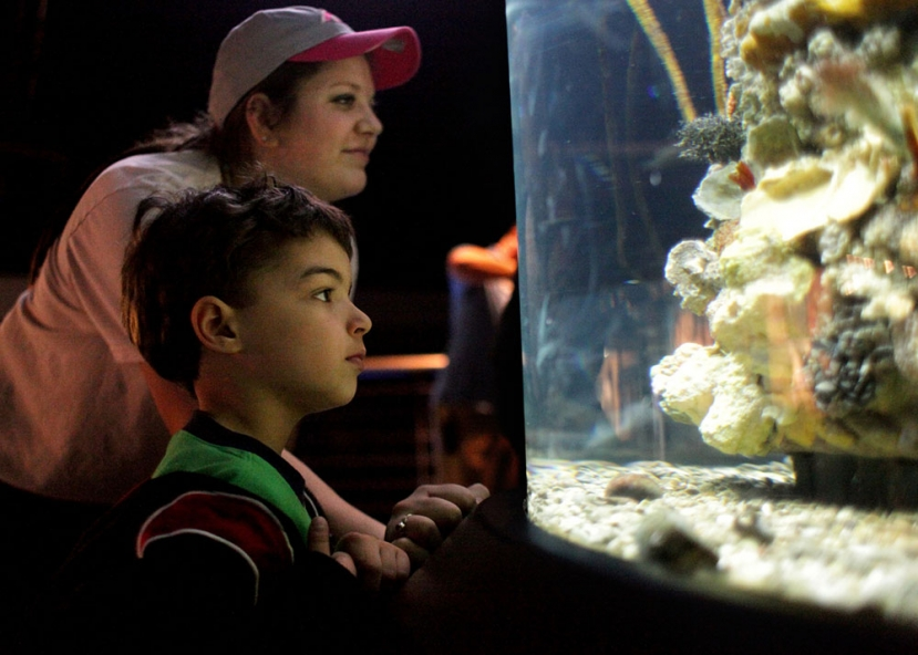 MOTHERS ADMISSION FREE AT AQUARIUM MAY 8