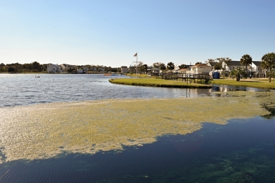 Town Manager Updates Council On Restarting Lake Dredging Project