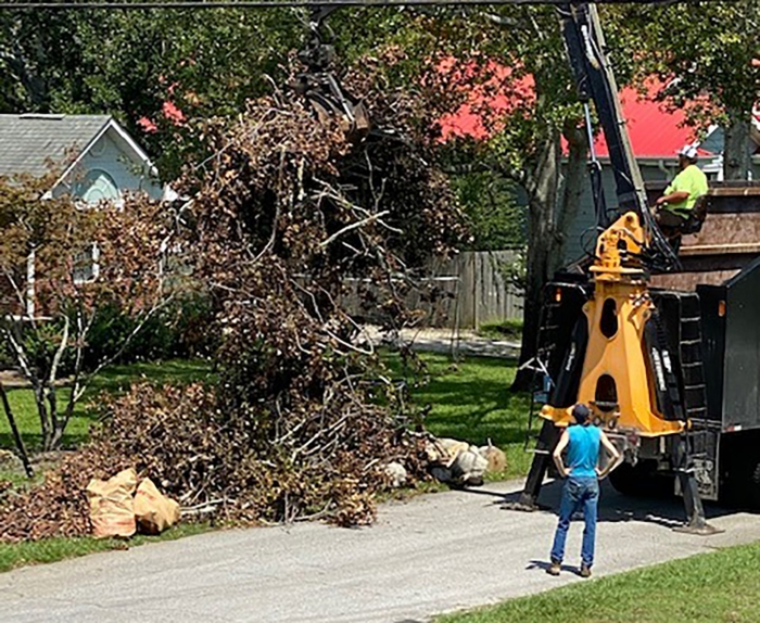 The Town of Carolina Beach,New Hanover County and other local governments will have crews out this week picking up storm debris, vegetation. That does not include furniture and construction materials. Keep all vegetative debris at the curb clear of utility boxes.